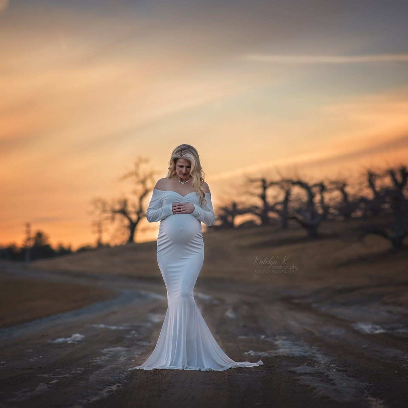 Christine long sleeve maternity gown