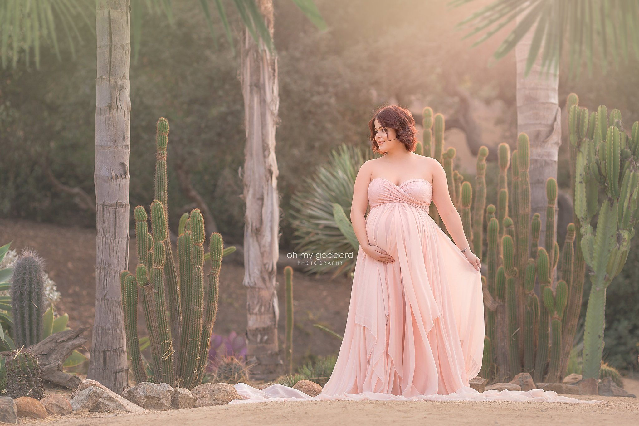 Jaiden Chiffon Maternity gown for photography