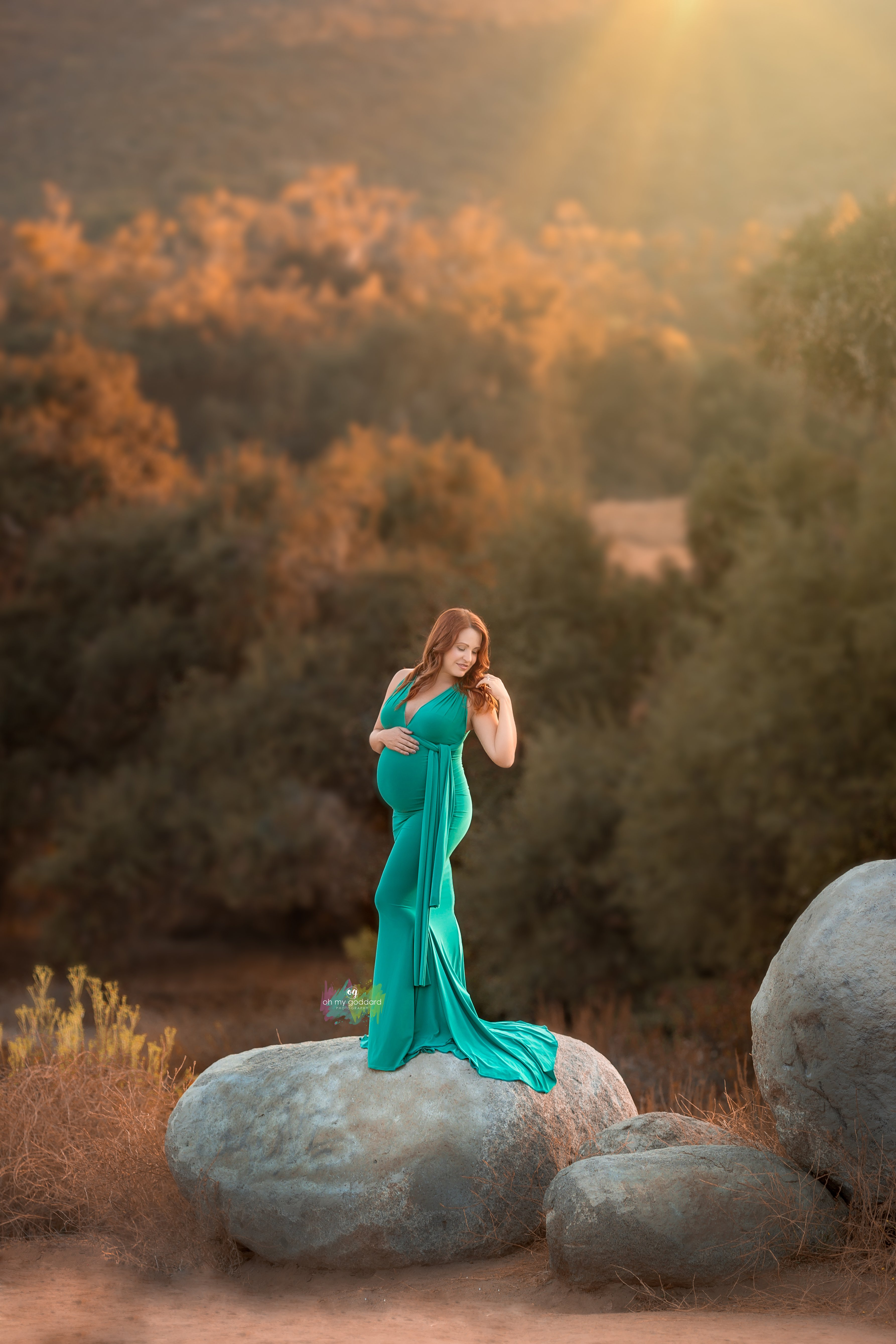 Molly Infinity Maternity Gown
