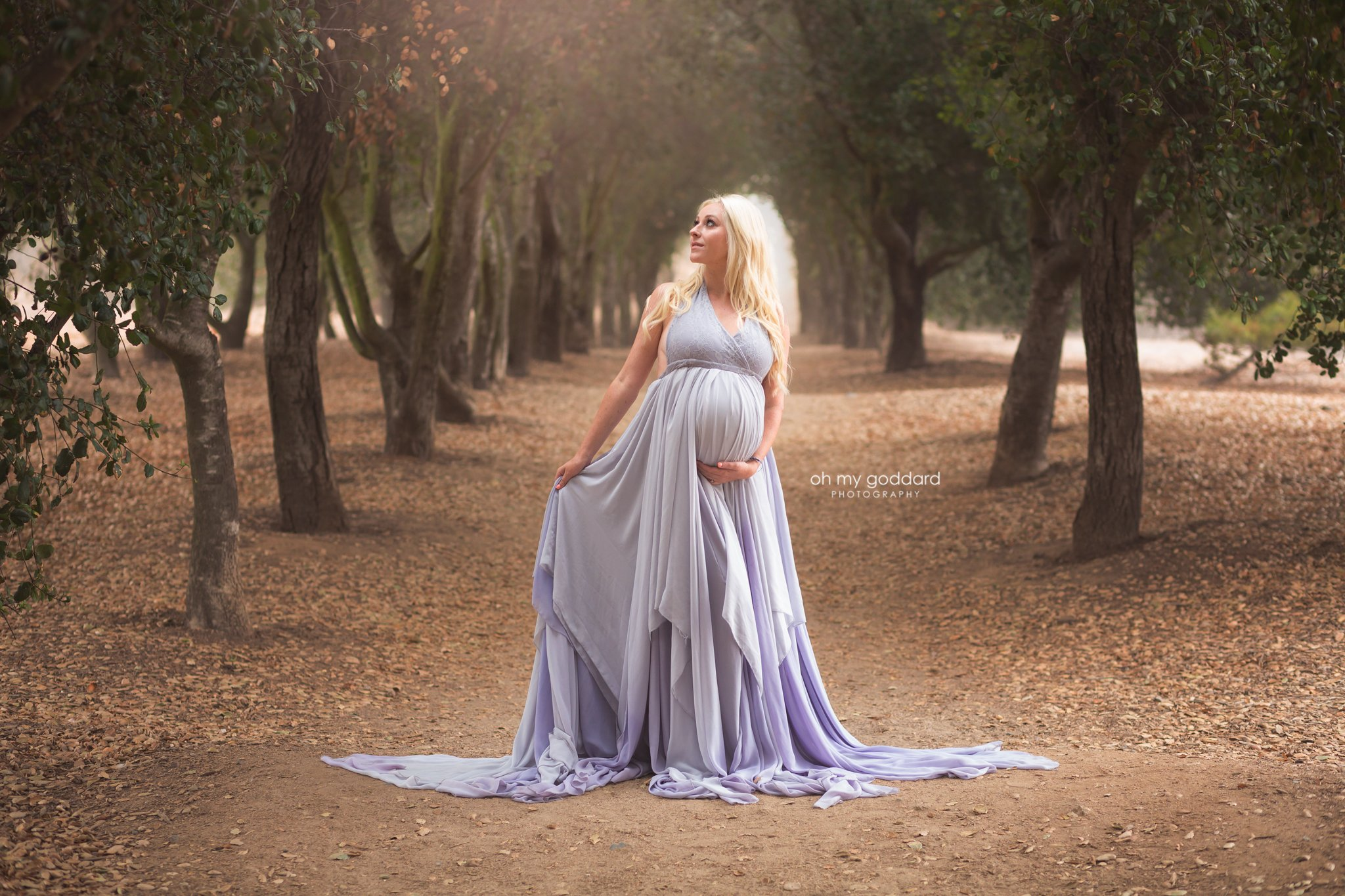 Mila Dip Dyed Ombre Maternity Gown