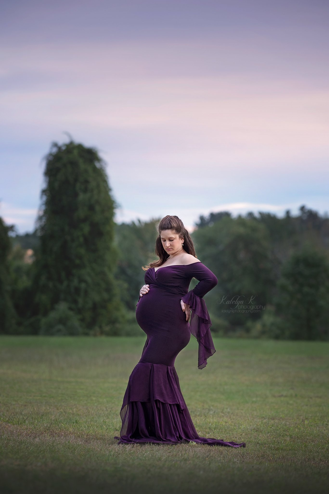 Brandy Chiffon Mermaid Maternity Dress