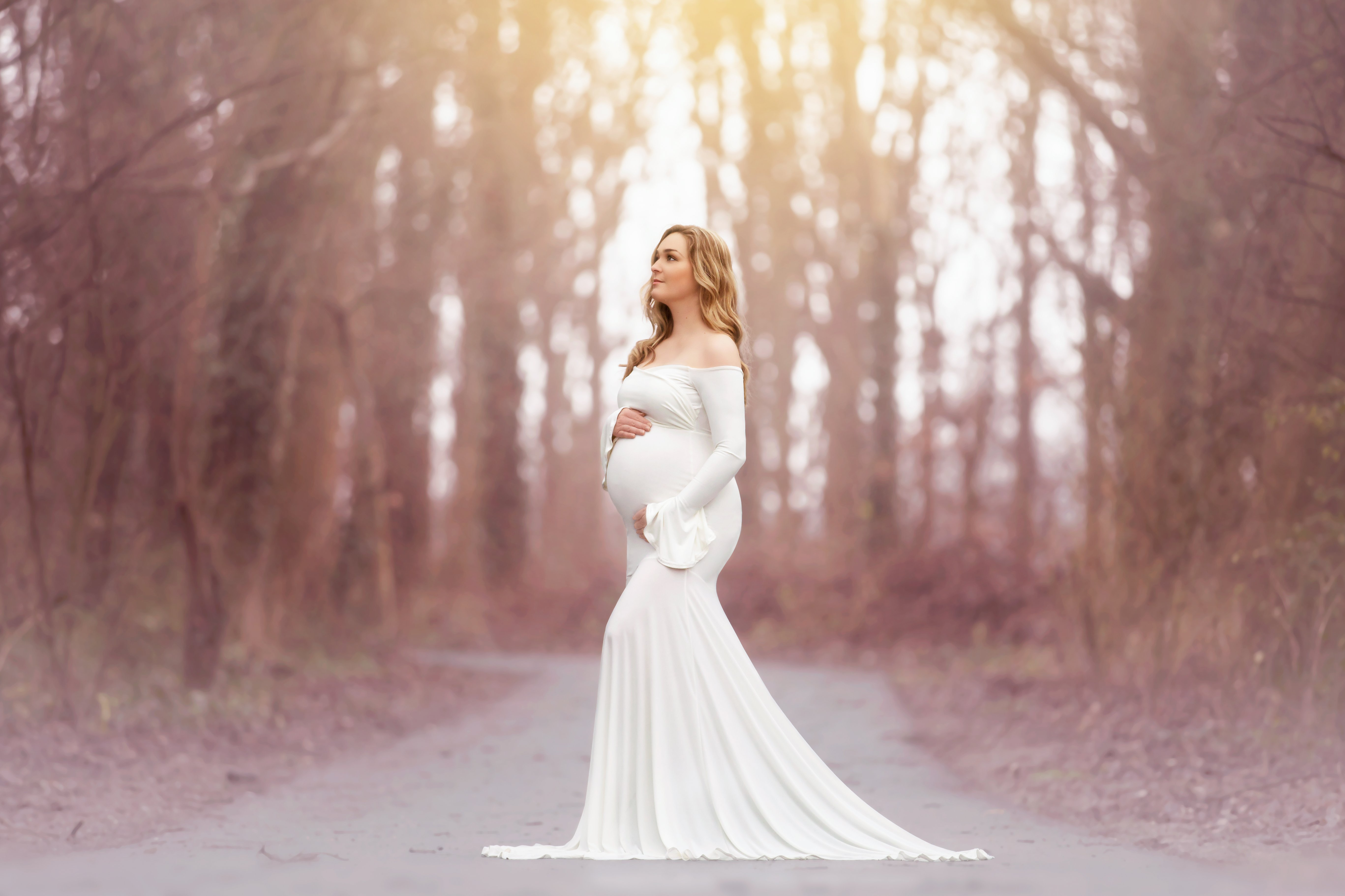 Scarlett maternity gowns photography